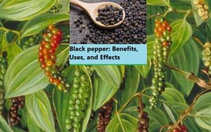 Black pepper: Benefits, Uses, and Effects