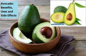Avocado: Benefits, Uses and Side Effects